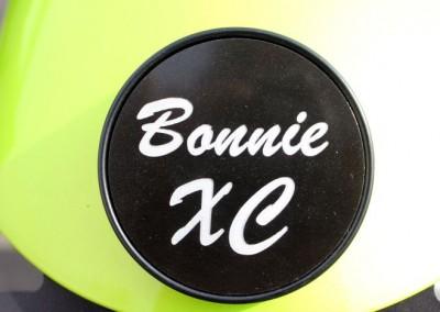bonnie-xc_15