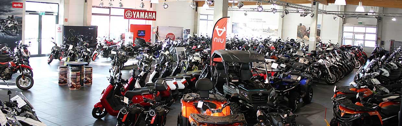 Neue und gebrauchte Zweiräder im Ausstellungsraum bei Motorrad Bayer GmbH Ulm / Senden